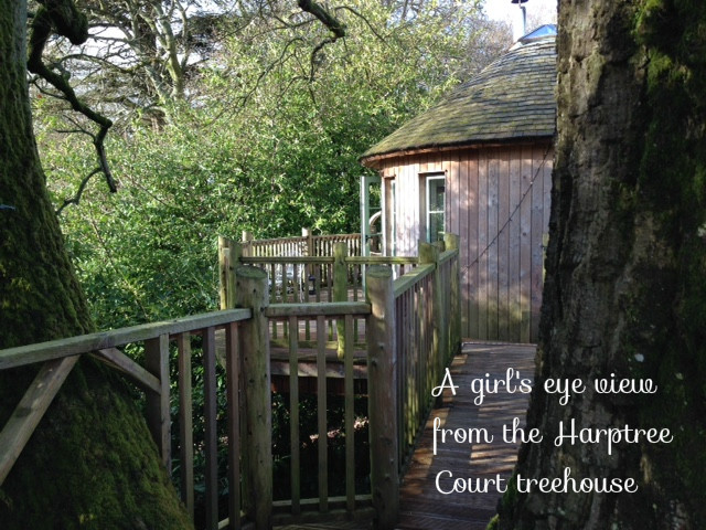 Harptree court treehouse review