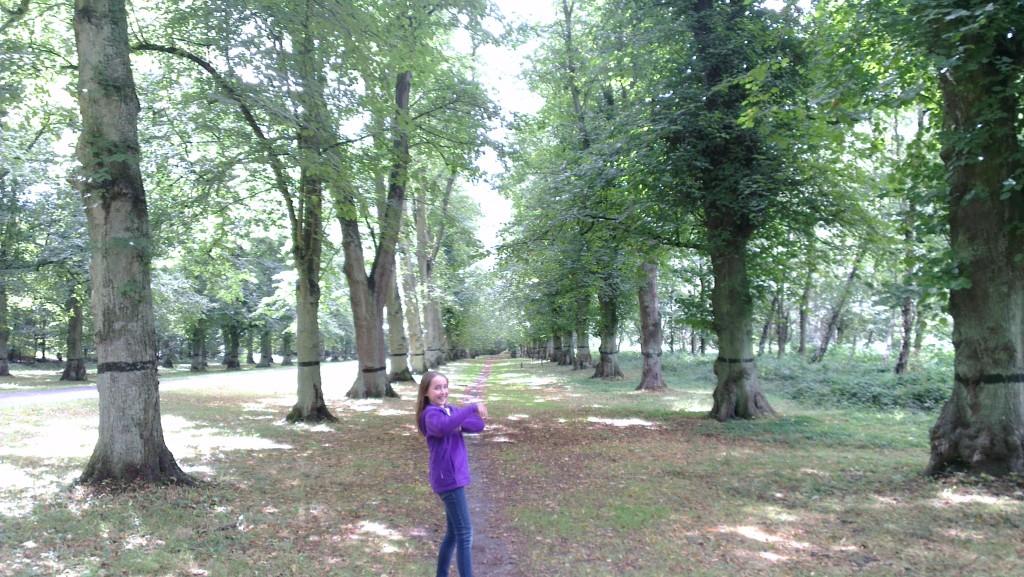 Clumber Park