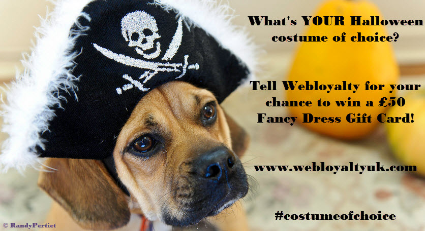 Webloyalty Halloween Costume of Choice Competition 2014