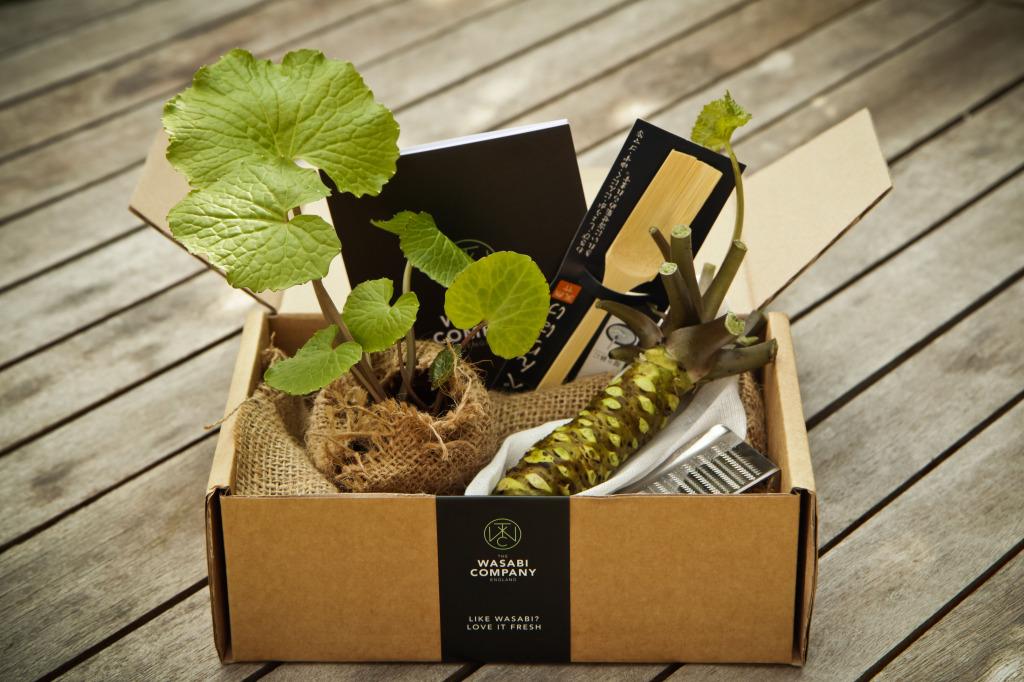 Wasabi Company gift box