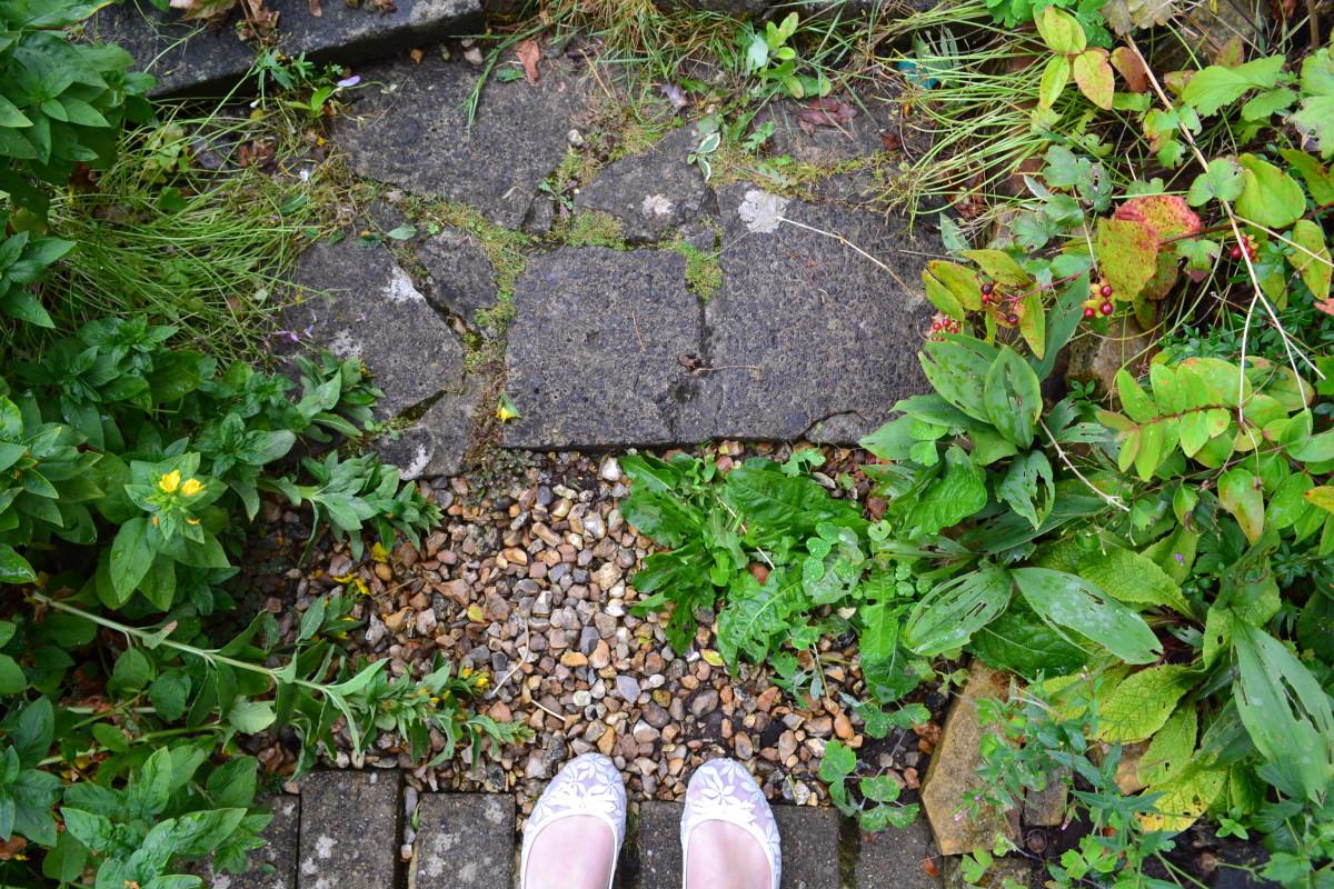 gardens steps