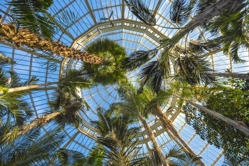 shutterstock_363302444 (1), Oakley conservatories