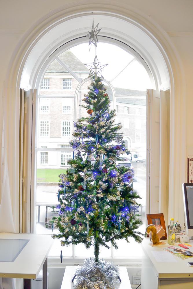 Poundstretcher Christmas decorations