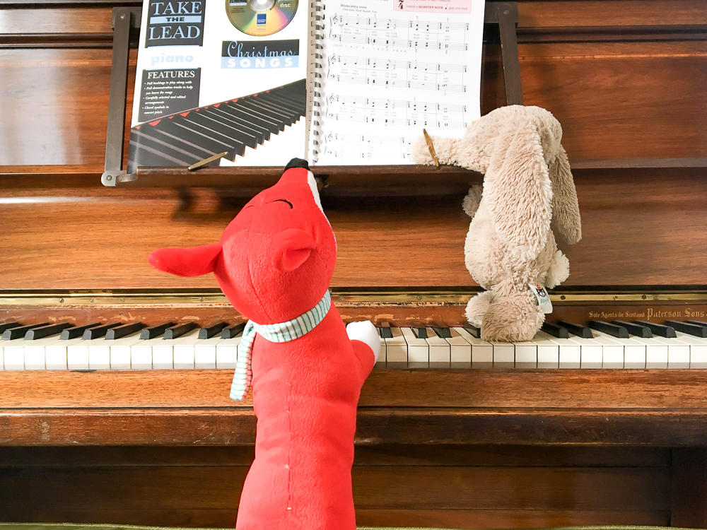 rabbit playing the piano