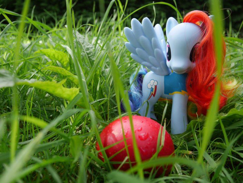 My Little Pony at Argos