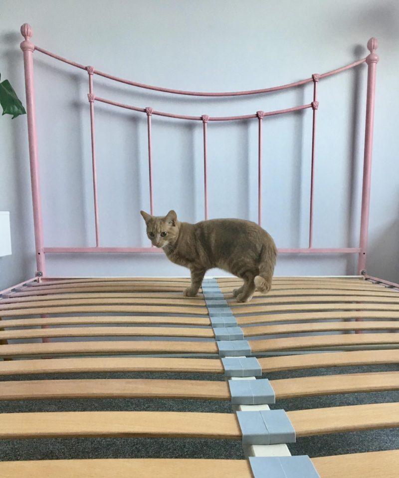 Simba Hybrid mattress discount code review