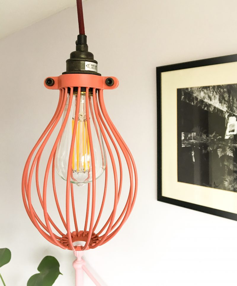 Rosa Cage Pendant Light