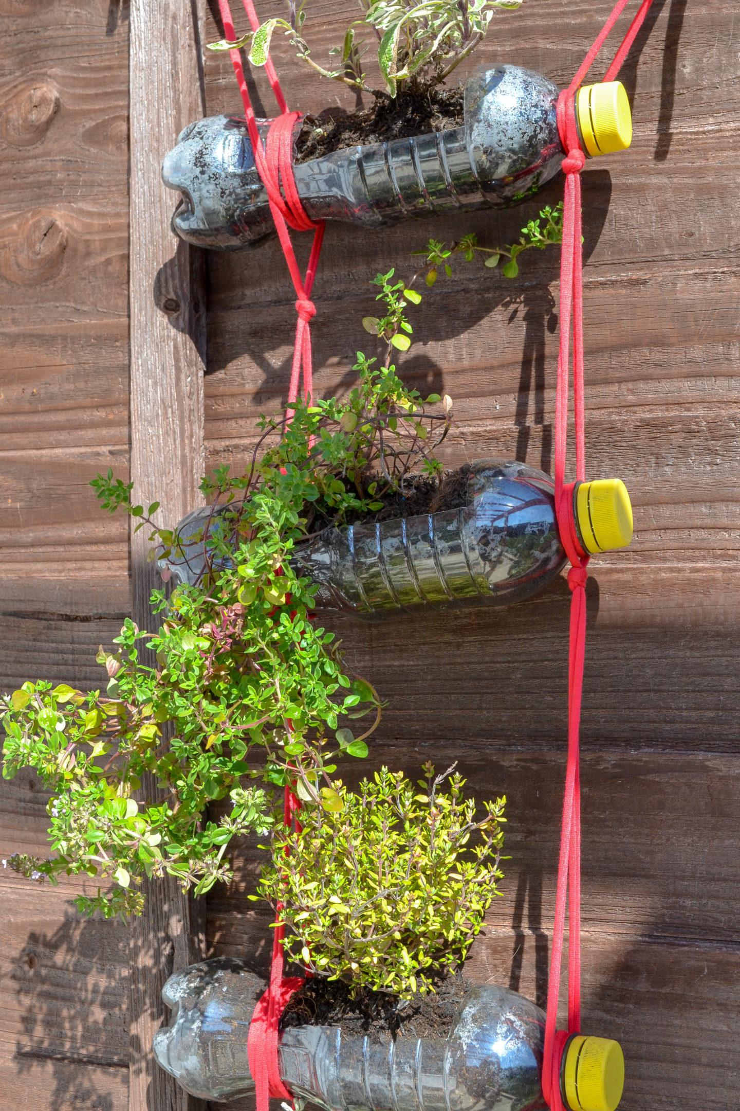 vertical garden plastic bottles