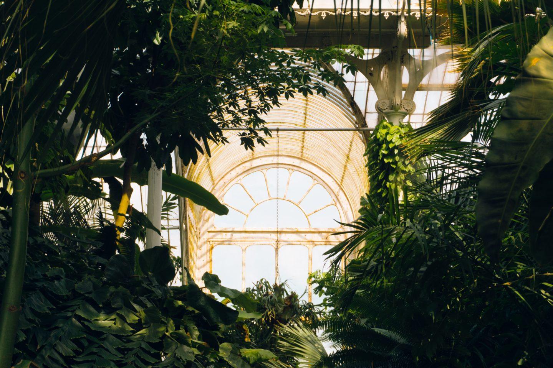 kew gardens accessibility