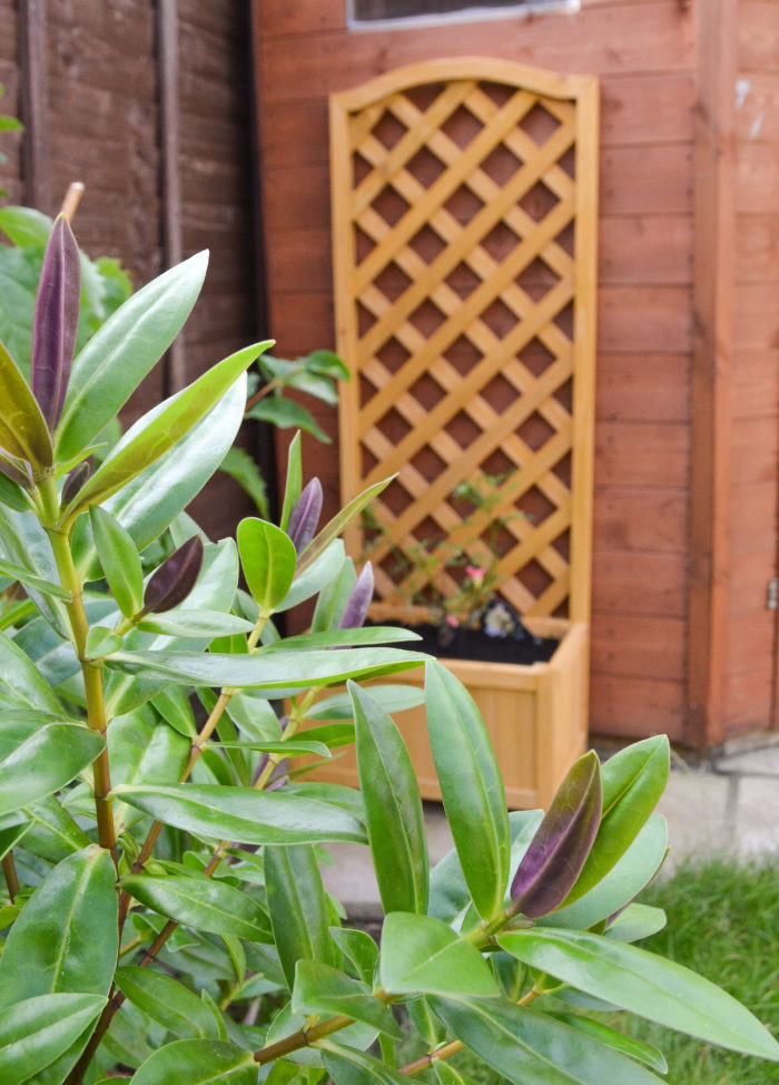 HotUKDeals gardening