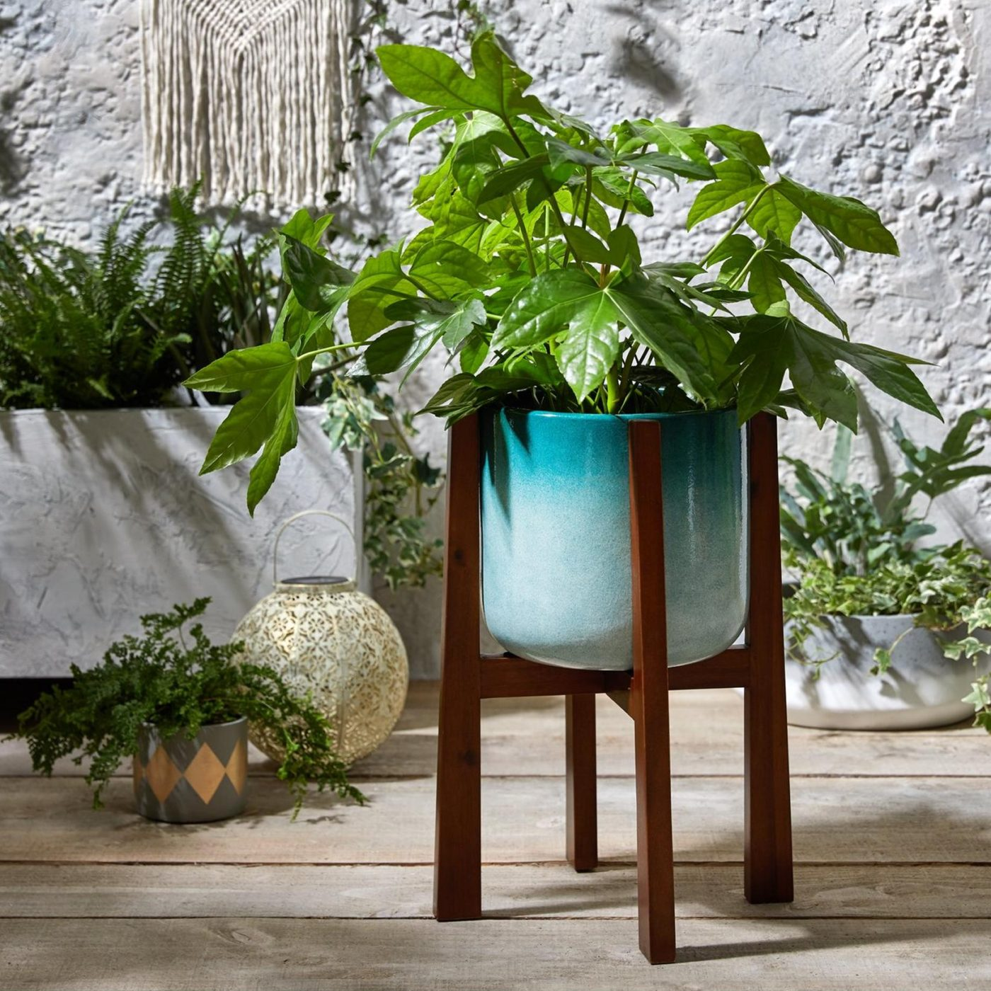 ombre coloured planter