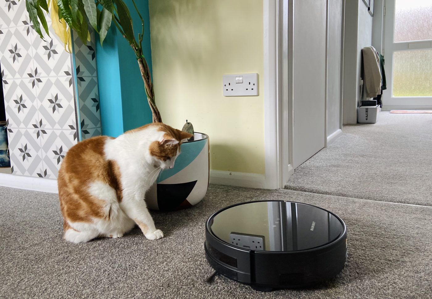 Robot vacuum cleaner competition