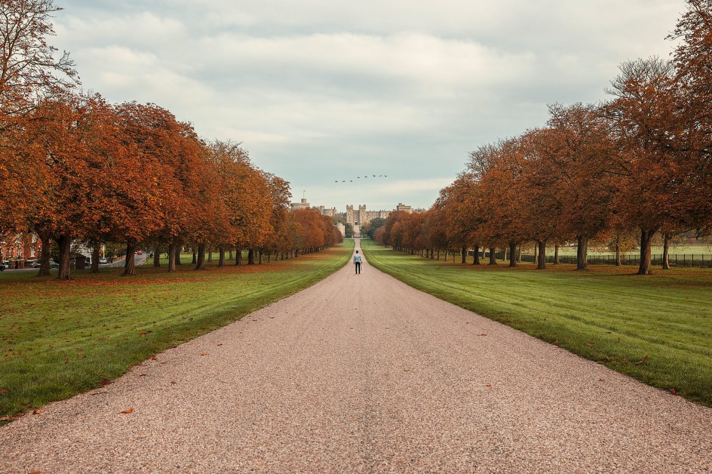 Windsor Great Park things to do